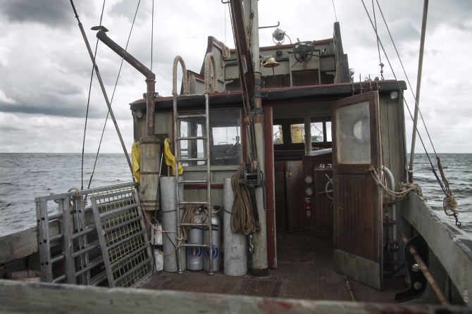 The Orca Project Hollanderdesignlab Com