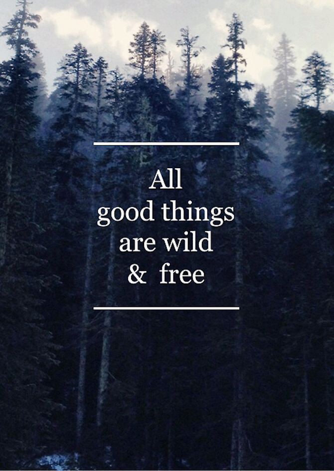ALL GOOD THINGS ARE WILD & FREE - A Style Life 4 Me